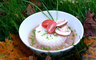champignonragout vegetarisch
